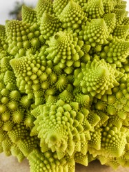 Perfect spiral structures of broccoli romanesco
