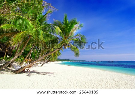 perfect tropical beach