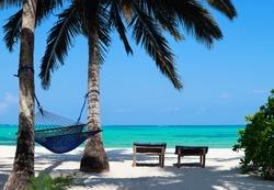 Perfect tropical beach of Zanzibar island with palm trees, sunbeds and hammock