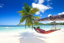 Perfect tropical paradise beach of seychelles island with palm trees and hammock