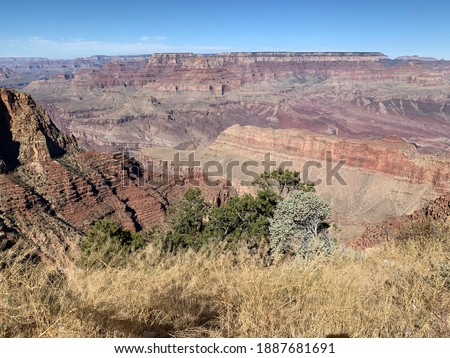 Perfect view of Amerika's National Park The Grand Canyon. Love the Nature, the silene , the beautiful colors.  Stok fotoğraf ©