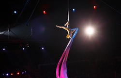 performance of air acrobats in the circus.