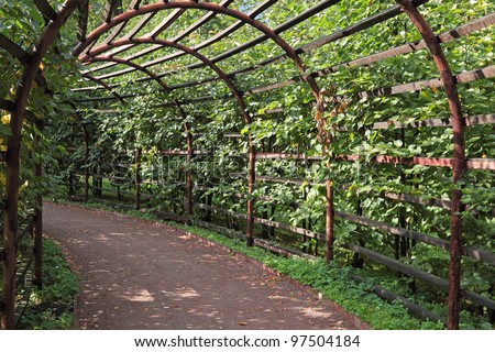Pergola covered plants in the summer the park stock photo