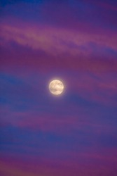 Perigee Moon (Supermoon) surrounded by purple clouds at sunset with a dark blue sky, closest point of our satellite to planet Earth