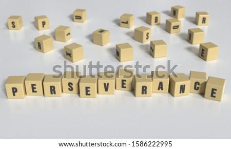 Perseverance concept. Text on blocks. 3d illustration