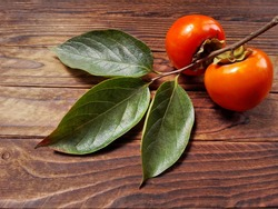 Persimmon kaki fruit branch on wooden background top view. Tasty persimmon fruit or kaki & leaf closeup. Organic fresh persimmon twig from fuyu fruit garden farm. Raw orange diospyros kaki closeup
