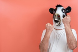 person disguised as a cow in a boxing stance on a pink background