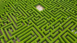 person in a maze surrounded by green nature