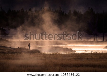 Person standing by lake watching geese with steam water and golden sunshin in the wilderness