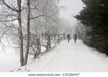 Persons Walking on Snowy Road in Misty Forest.