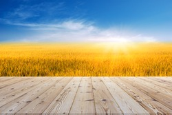 Perspective brown wooden board empty table in front of paddy field or rice field in morning time with sunlight on background - can be used for display or montage your products.Mock up for display of p