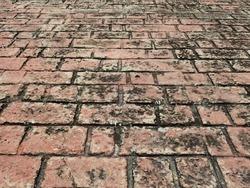 perspective of dirty brick walkway texture, floor in street