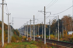 Perspective of railway tracks with many electricity pylons. Two railroad tracks running through autumnal woods. Two railroad tracks vanishing into the distance.