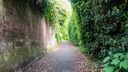 Perspective view of a public footpath next to a residential estate with an old brick wall to the left and various trees and bushes to the right.