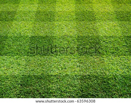 Perspective view of Beautiful square tone lawn