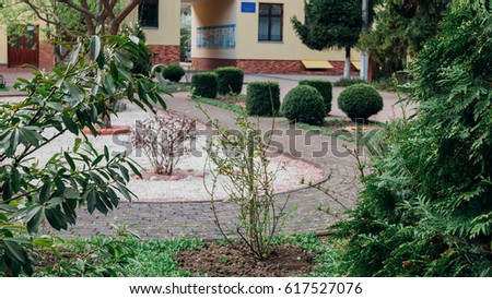 Perspective View of Various Color Grunge Brick Stone on The Ground for Street Road. Sidewalk, Driveway, Pavers, Pavement in Vintage Design Flooring Hexagon Pattern Texture Background,the bushes around