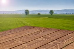 Perspective view of wooden table top corner on green landscape background with copy space