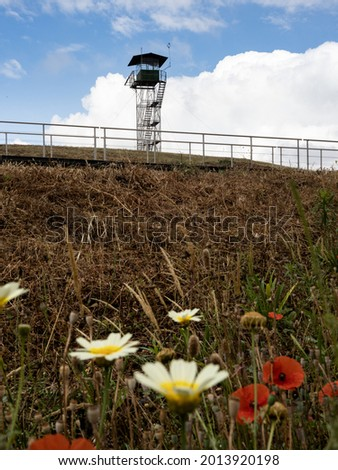 Perspective view on a watch tower in the Montemor-o-Novo Castle, with some wild flowers in the foreground. Montemor-o-Novo, Portugal. Foto stock ©