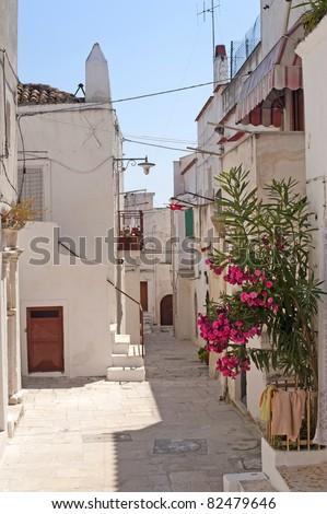 Peschici (Gargano, Puglia, Italy) a street of the old village