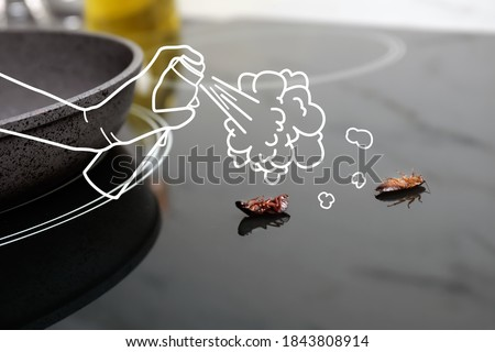 Pest control. Using household insecticide to kill cockroaches at home, closeup. Illustration Foto stock ©