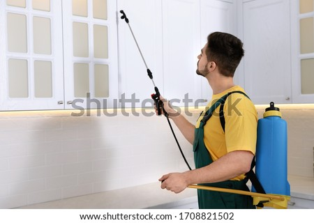 Pest control worker spraying insecticide on furniture in kitchen Foto stock ©