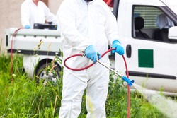 Pest control worker spraying insecticides or pesticides outdoors. Ragweed hay fever chemical treatment.