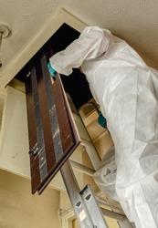 Pest controller,  builder, trades man climbing ladder in to loft hatch with loft crawl board.