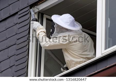 Pest controller removing a hornet nest