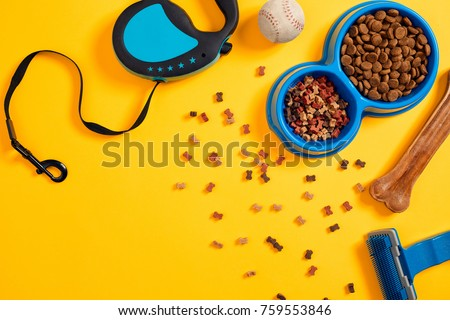 Pet accessories, food, toy. Top view #759553846