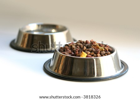 pet food isolated on white background