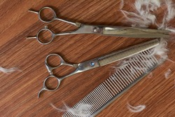Pet grooming scissors and comb. Hair cutting tools top view.