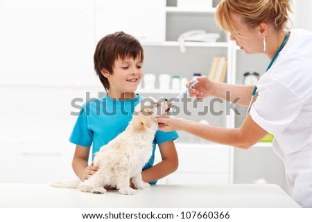 Pet taking medicine - young boy with his fluffy dog at the veterinary doctor