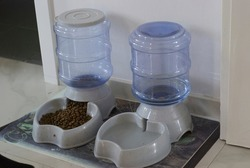 Pet water and dry food dispenser with automatic gravity refill
