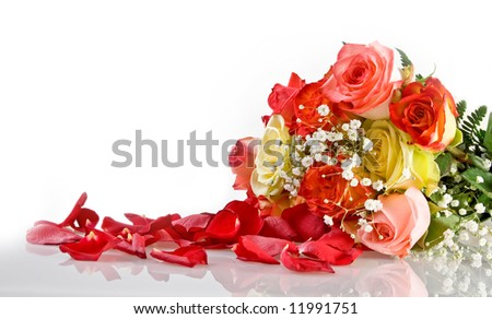 Petals and multicolored roses