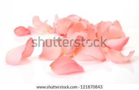 Petals of a pink rose #121870843