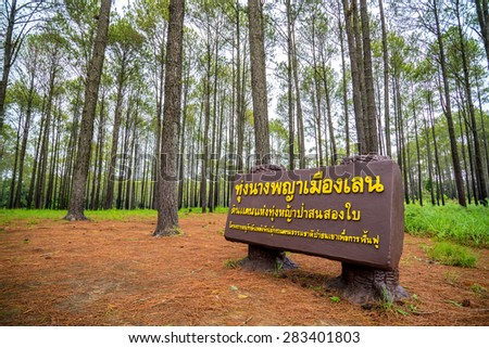 Petchaboon - May 23,2015 : Sign of travel location of pine forest at Salangleung field national park