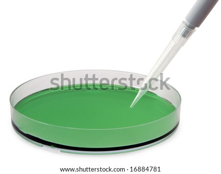 Petri dish containing a green solution, with a pipette.