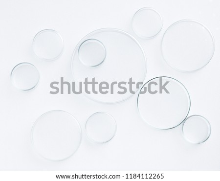 petri dish science equipment lab on white background