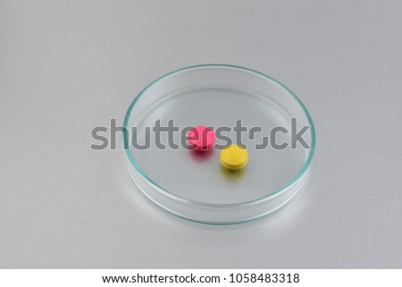 Petri dish with medication stock images. Petri dish with a pills on a gray background. Laboratory accessories for growing bacteria