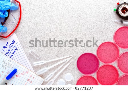 Petri dishes filled with pink eosin media solution and hand written chemistry notes with assorted process equipment on a laboratory bench surface for a scientific experiment in a science research lab