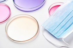 Petri dishes with colorful agar media with bacterial colonies for biochemical analysis in microbiological laboratory and medical face mask.