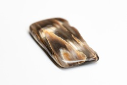 Petrified wood thin slab section multi-tonal striations and high level of polish.