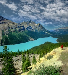Peyto lake in Banff, Alberta, Canada, UNESCO