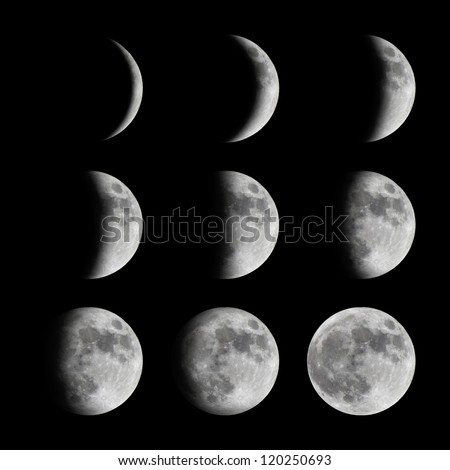 Phases of the moon from new to full