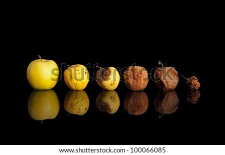 Phases of the rotting yellow apple isolated on black.