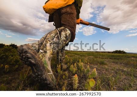 Shutterstock Pheasant Hunting Montana Grasslands