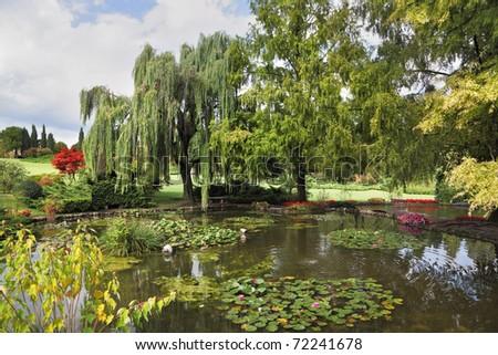 Phenomenally beautiful park-garden Sigurta. Shallow pond, trees and flowers