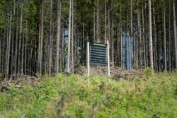 Pheromone silt trap for the European spruce bark beetle