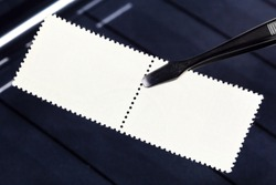 philately concept - tongs keeps postage stamps with mint back side