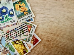 Philately: Spring themed stamp collection with copy space